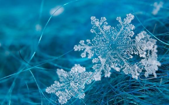 8825799-snowflakes